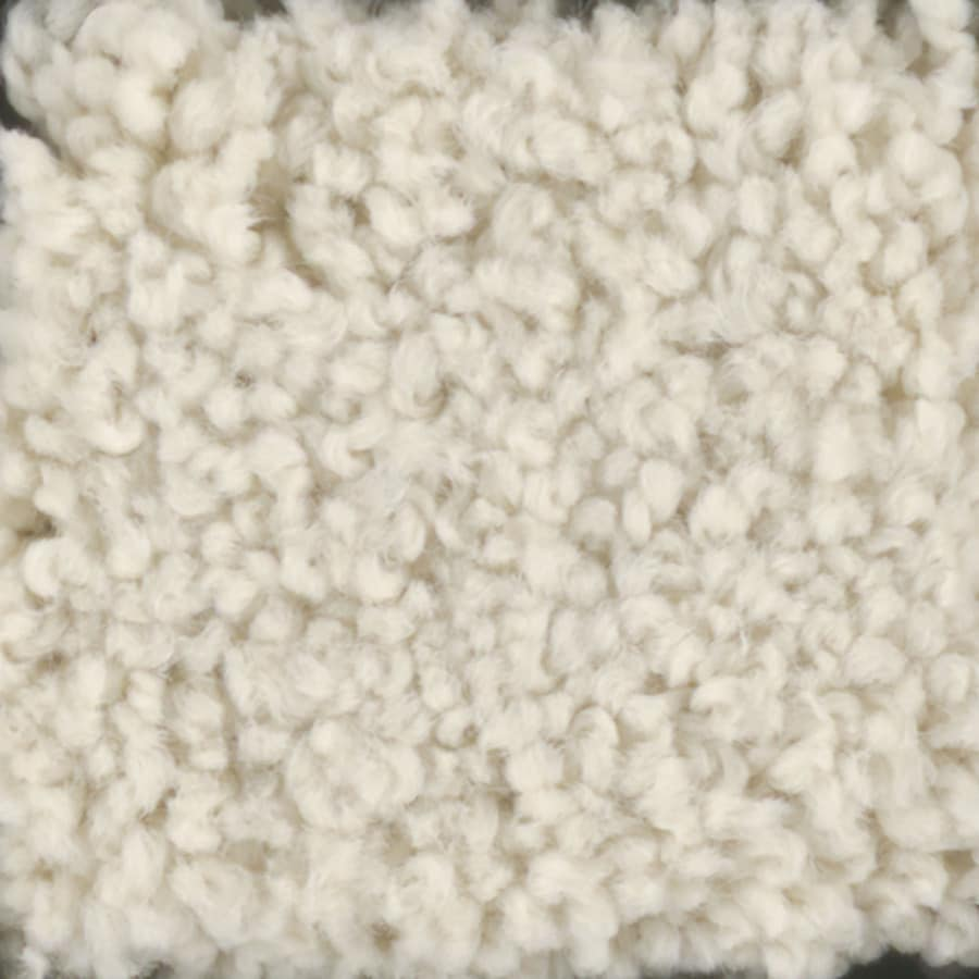 STAINMASTER TruSoft Subtle Beauty 15-ft W x Cut-to-Length Hominy Textured Interior Carpet