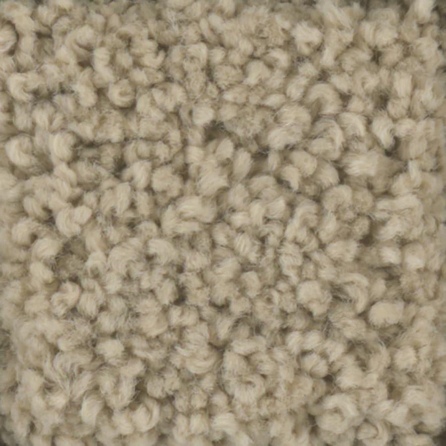 STAINMASTER TruSoft Subtle Beauty Sombrero Textured Interior Carpet