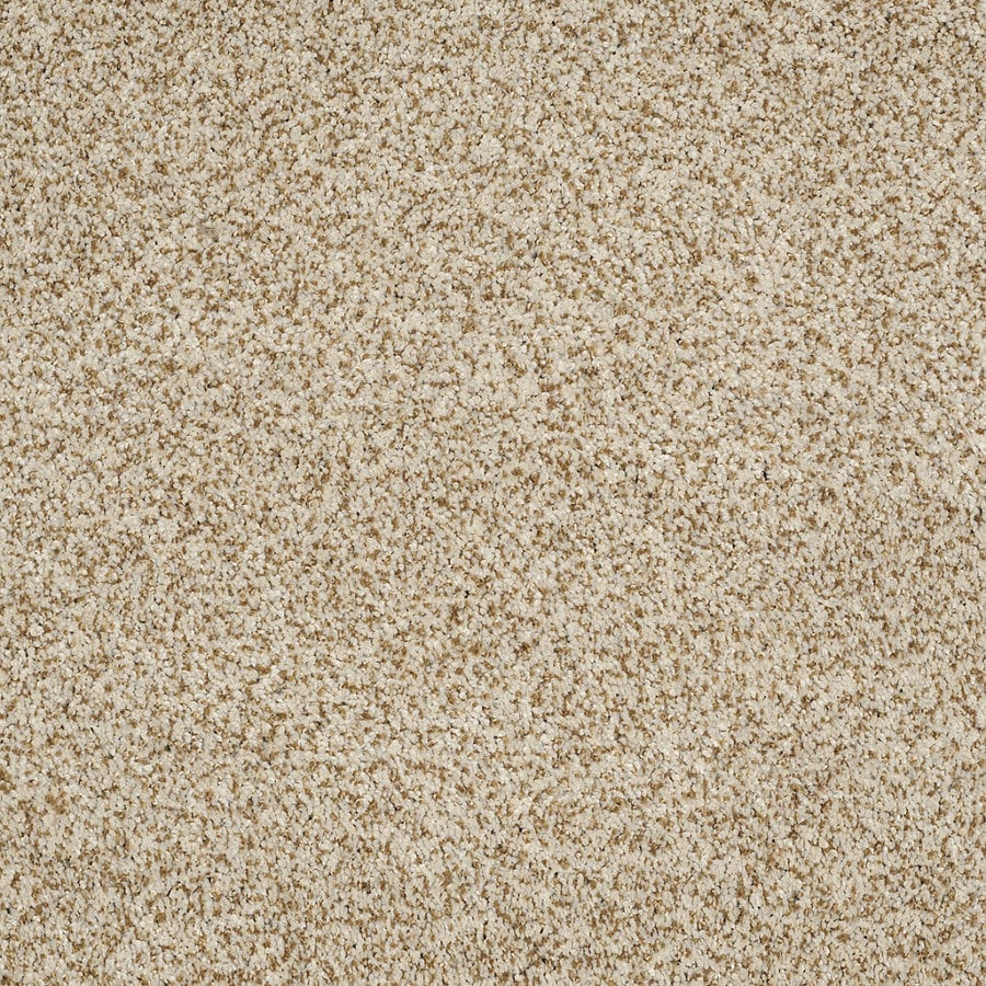 Shaw Private Oasis IV Cappuccino Rectangular Indoor Tufted Area Rug (Common: 6 x 9; Actual: 72-in W x 108-in L)