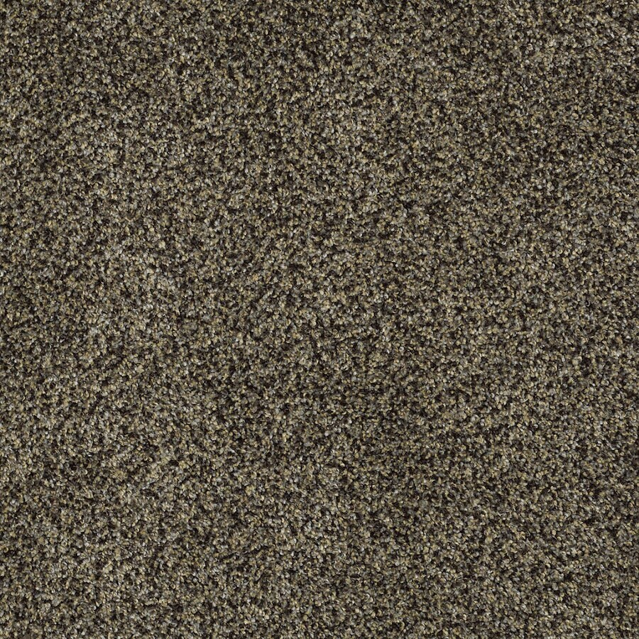 Shaw Private Oasis IV Star Beach Rectangular Indoor Tufted Area Rug (Common: 6 x 9; Actual: 72-in W x 108-in L)