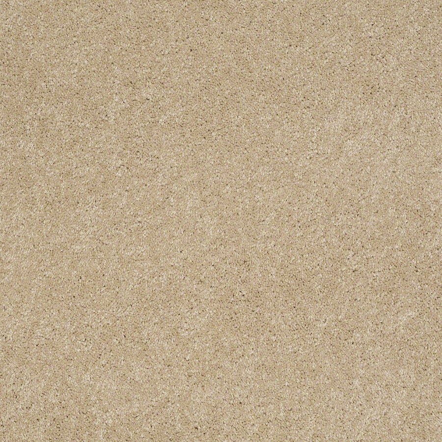 Shaw Supreme Delight 1 Nevada Sand Rectangular Indoor Tufted Area Rug (Common: 6 x 9; Actual: 72-in W x 108-in L)