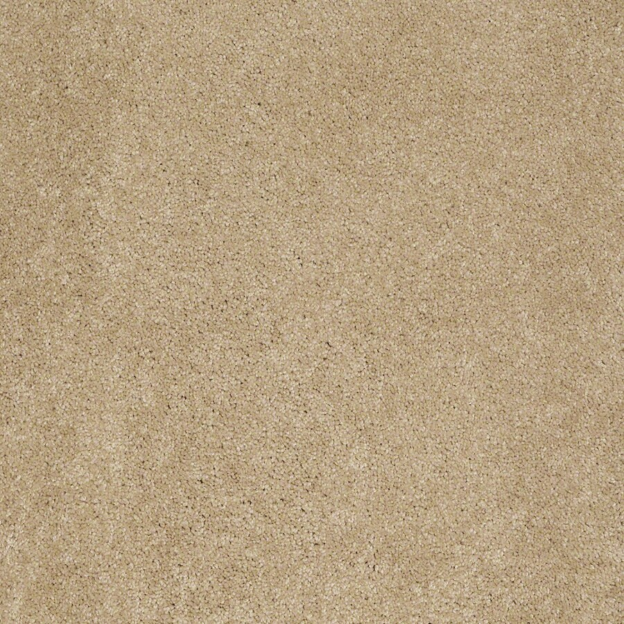 Shaw Supreme Delight 1 Sunspot Rectangular Indoor Tufted Area Rug (Common: 6 x 9; Actual: 72-in W x 108-in L)
