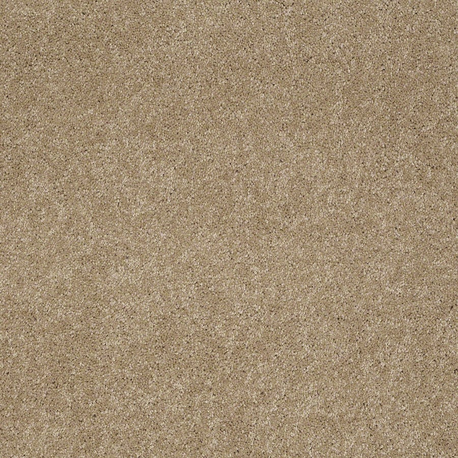 Shaw Supreme Delight 1 Trail Rectangular Indoor Tufted Area Rug (Common: 6 x 9; Actual: 72-in W x 108-in L)