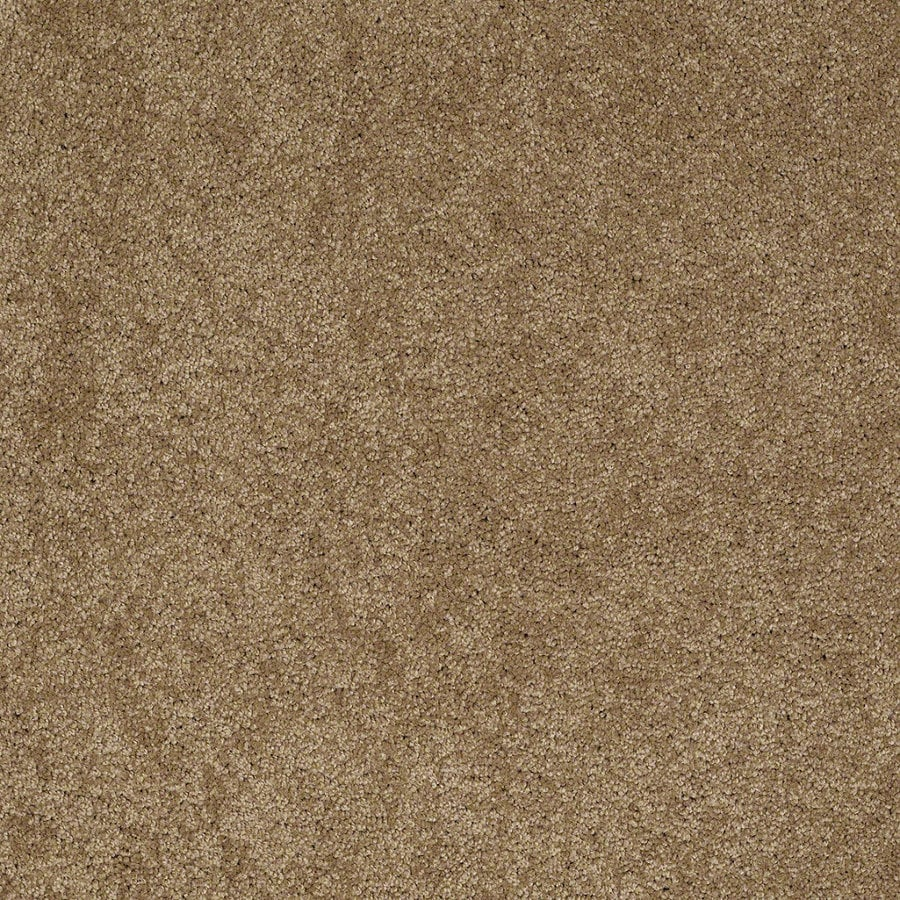 Shaw Supreme Delight 1 Cedar Chest Rectangular Indoor Tufted Area Rug (Common: 6 x 9; Actual: 72-in W x 108-in L)