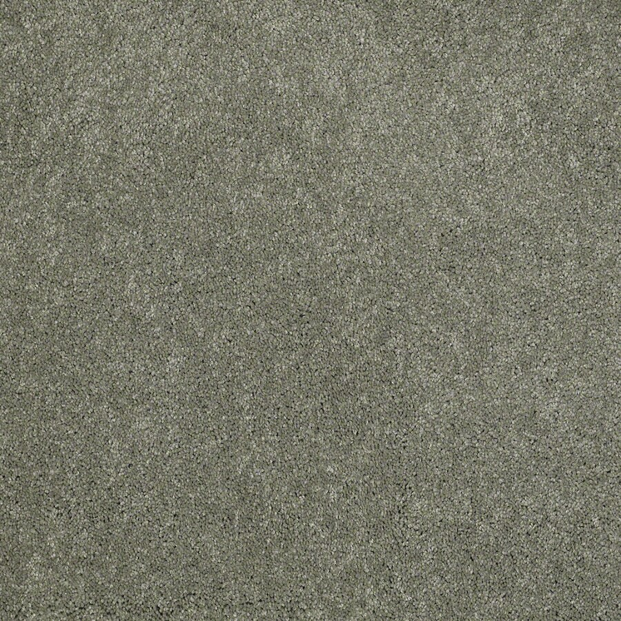 Shaw Supreme Delight 1 Fresh Dew Rectangular Indoor Tufted Area Rug (Common: 6 x 9; Actual: 72-in W x 108-in L)