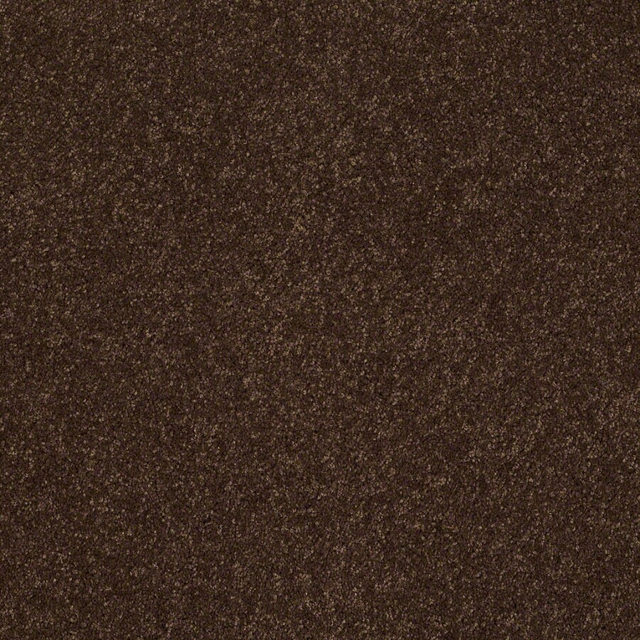Shaw Supreme Delight 1 Decaf Rectangular Indoor Tufted Area Rug (Common: 6 x 9; Actual: 72-in W x 108-in L)