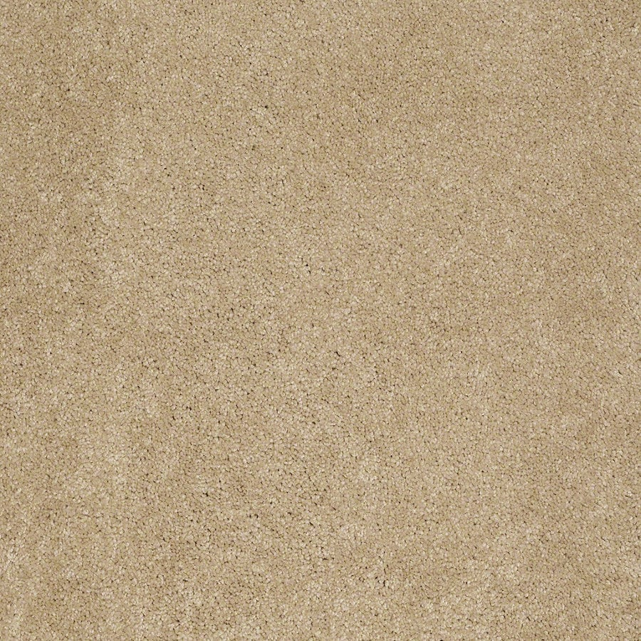 Shaw Supreme Delight 2 Sunspot Rectangular Indoor Tufted Area Rug (Common: 6 x 9; Actual: 72-in W x 108-in L)