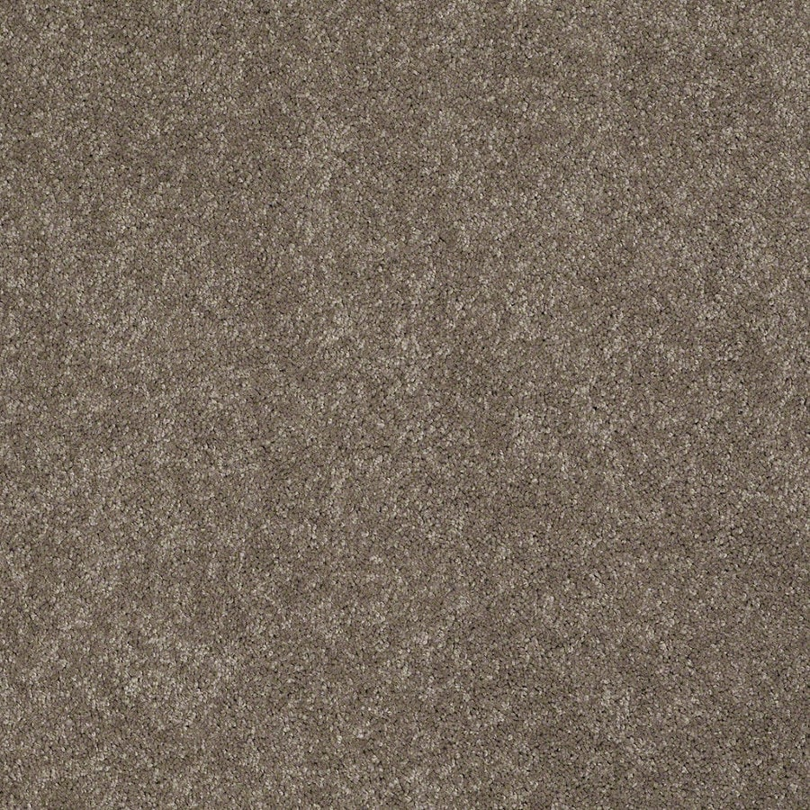 Shaw Supreme Delight 2 Misty Taupe Rectangular Indoor Tufted Area Rug (Common: 6 x 9; Actual: 72-in W x 108-in L)