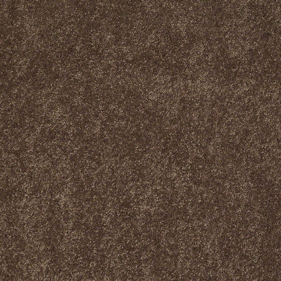 Shaw Supreme Delight 2 Hot Cocoa Rectangular Indoor Tufted Area Rug (Common: 6 x 9; Actual: 72-in W x 108-in L)