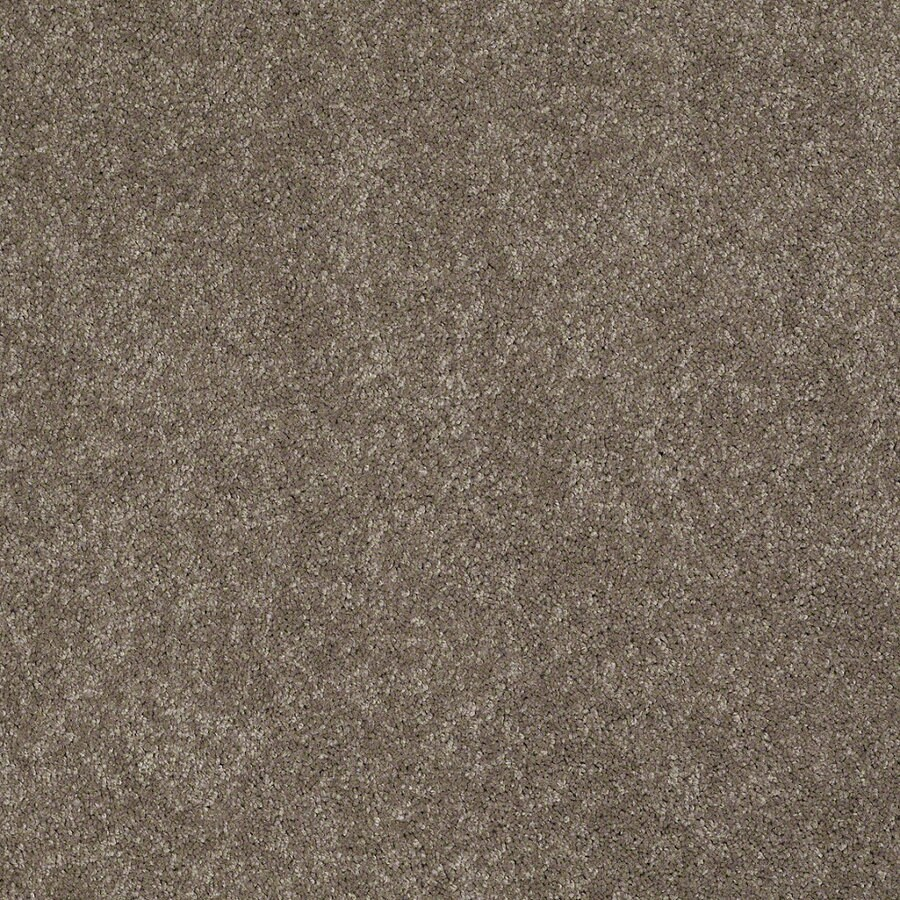 Shaw Supreme Delight 2 Misty Taupe Rectangular Indoor Tufted Area Rug (Common: 8 x 11; Actual: 96-in W x 132-in L)