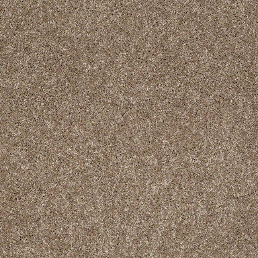Shaw Supreme Delight 2 Hazelnut Rectangular Indoor Tufted Area Rug (Common: 8 x 11; Actual: 96-in W x 132-in L)