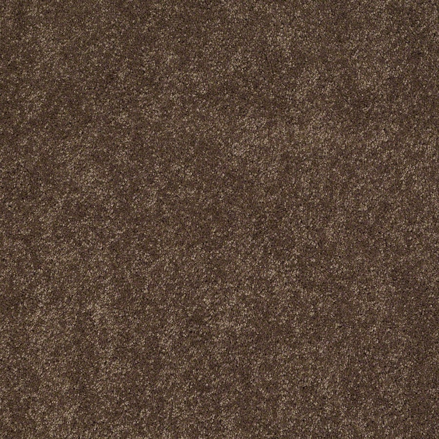 Shaw Supreme Delight 2 Hot Cocoa Rectangular Indoor Tufted Area Rug (Common: 8 x 11; Actual: 96-in W x 132-in L)