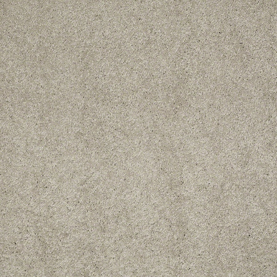 Shaw Supreme Delight 3 Limestone Rectangular Indoor Tufted Area Rug (Common: 8 x 11; Actual: 96-in W x 132-in L)