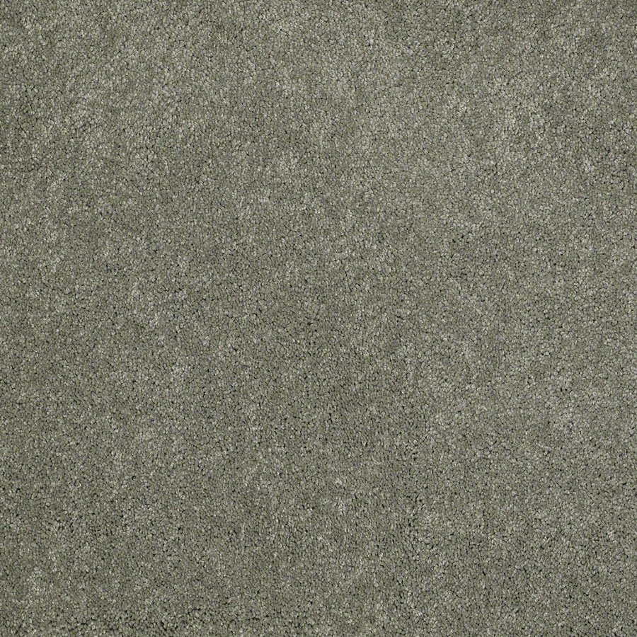 Shaw Supreme Delight 3 Fresh Dew Rectangular Indoor Tufted Area Rug (Common: 6 x 9; Actual: 72-in W x 108-in L)