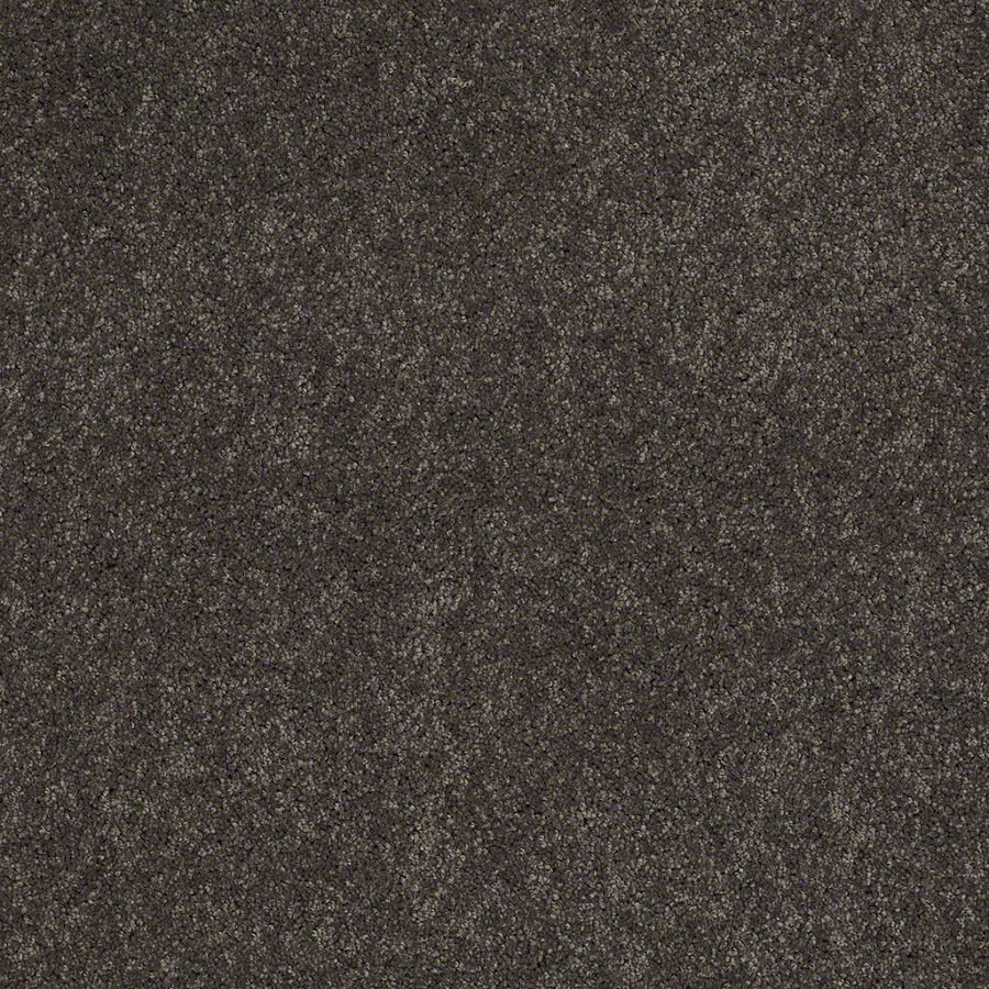 Shaw Supreme Delight 3 Nightfall Rectangular Indoor Tufted Area Rug (Common: 6 x 9; Actual: 72-in W x 108-in L)