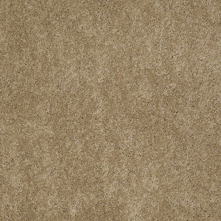 Shaw Supreme Delight 3 Peanut Butter Rectangular Indoor Tufted Area Rug (Common: 6 x 9; Actual: 72-in W x 108-in L)