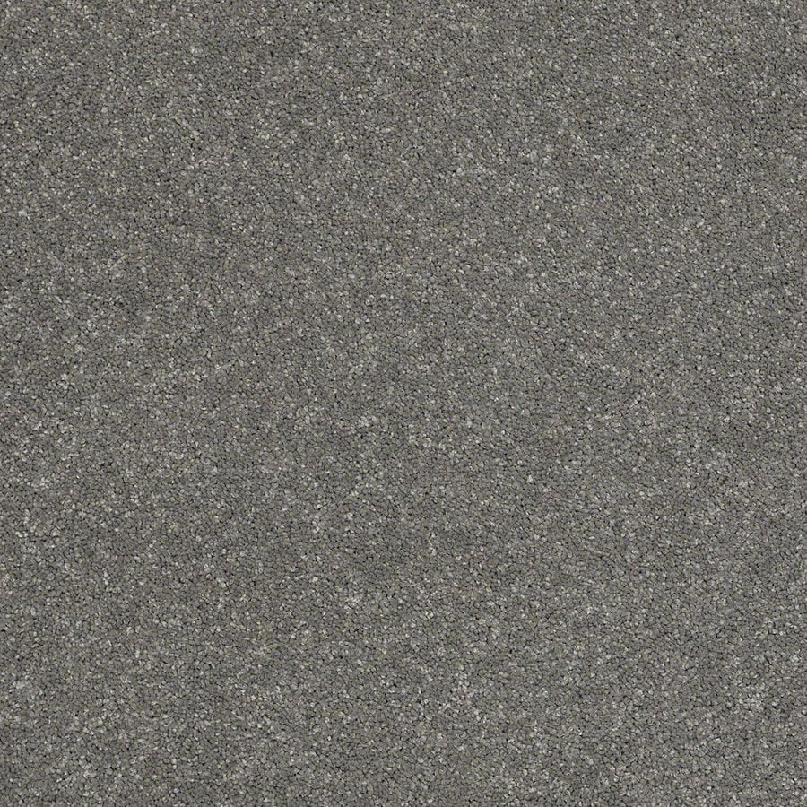 STAINMASTER TruSoft Classic I (S) Slate Textured Interior Carpet