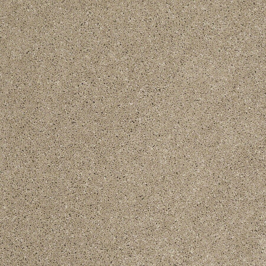 STAINMASTER TruSoft Classic I (S) Driftwood Textured Indoor Carpet