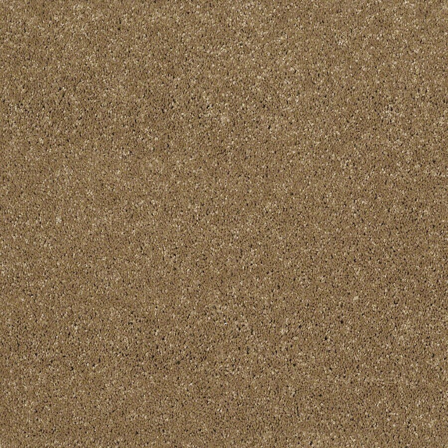 STAINMASTER Trusoft Classic I (S) Wickerwork Textured Interior Carpet