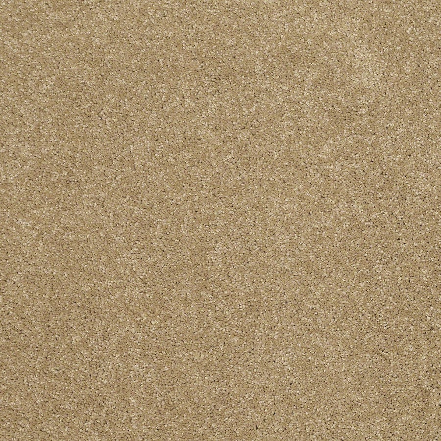 STAINMASTER Trusoft Classic I (S) Cappuccino Textured Interior Carpet