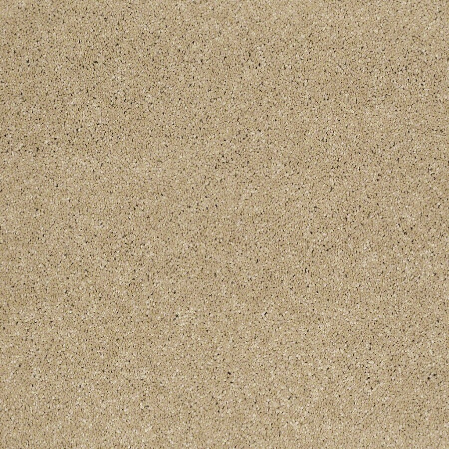 STAINMASTER TruSoft Classic I (S) Canyon Road Textured Interior Carpet