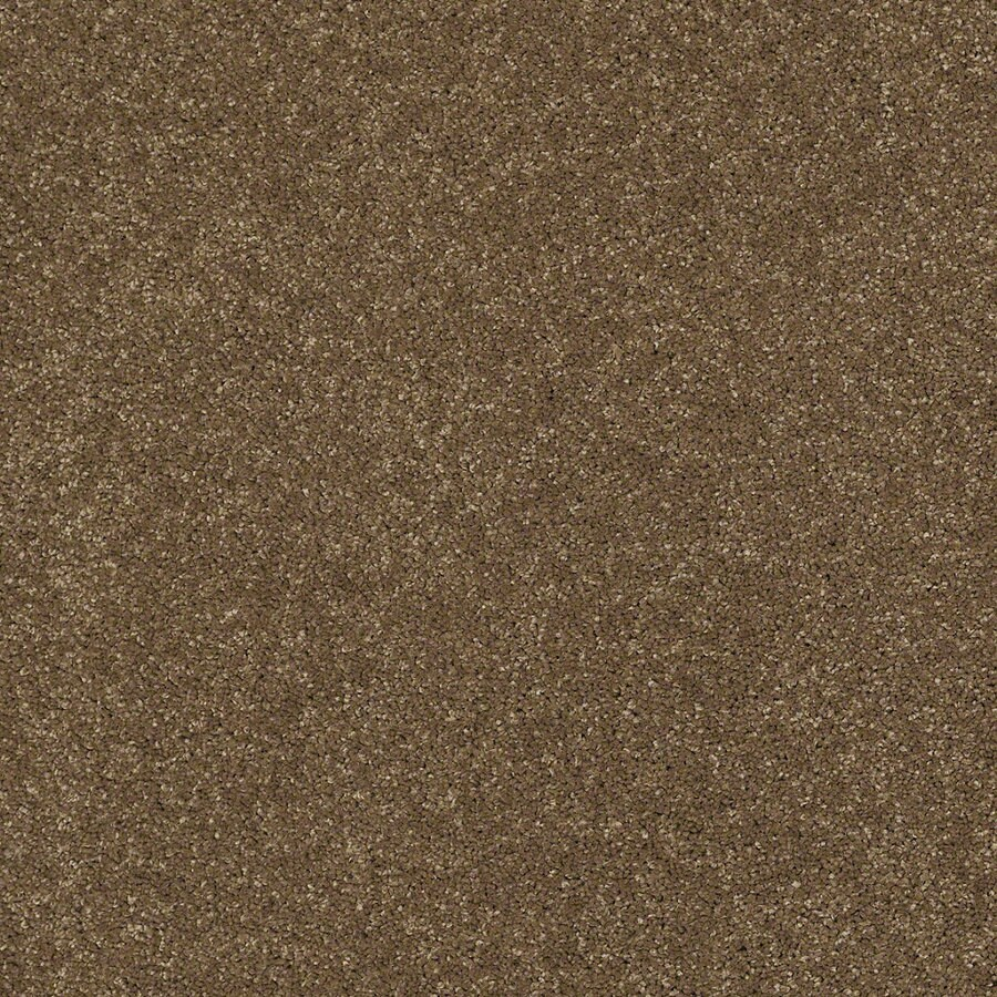 STAINMASTER TruSoft Classic I (S) Tea Wash Textured Interior Carpet