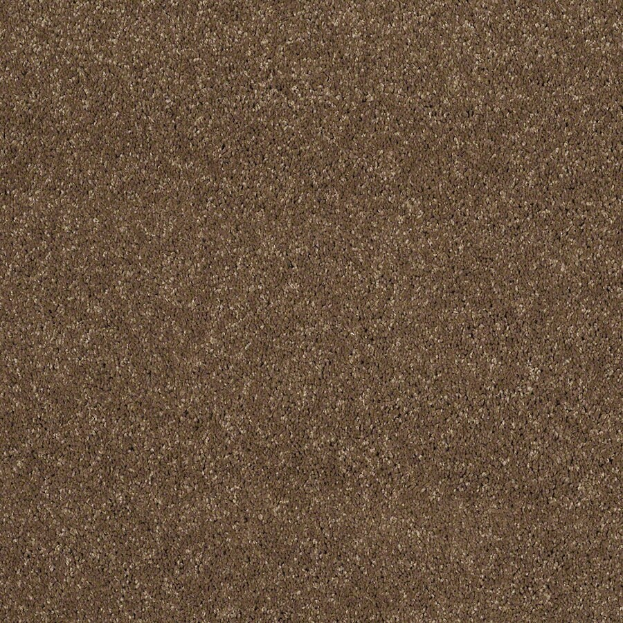 STAINMASTER TruSoft Classic I (S) Chestnut Textured Interior Carpet