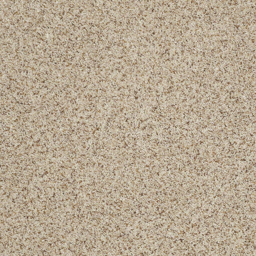 STAINMASTER TruSoft Classic I (T) Cityscape Textured Interior Carpet
