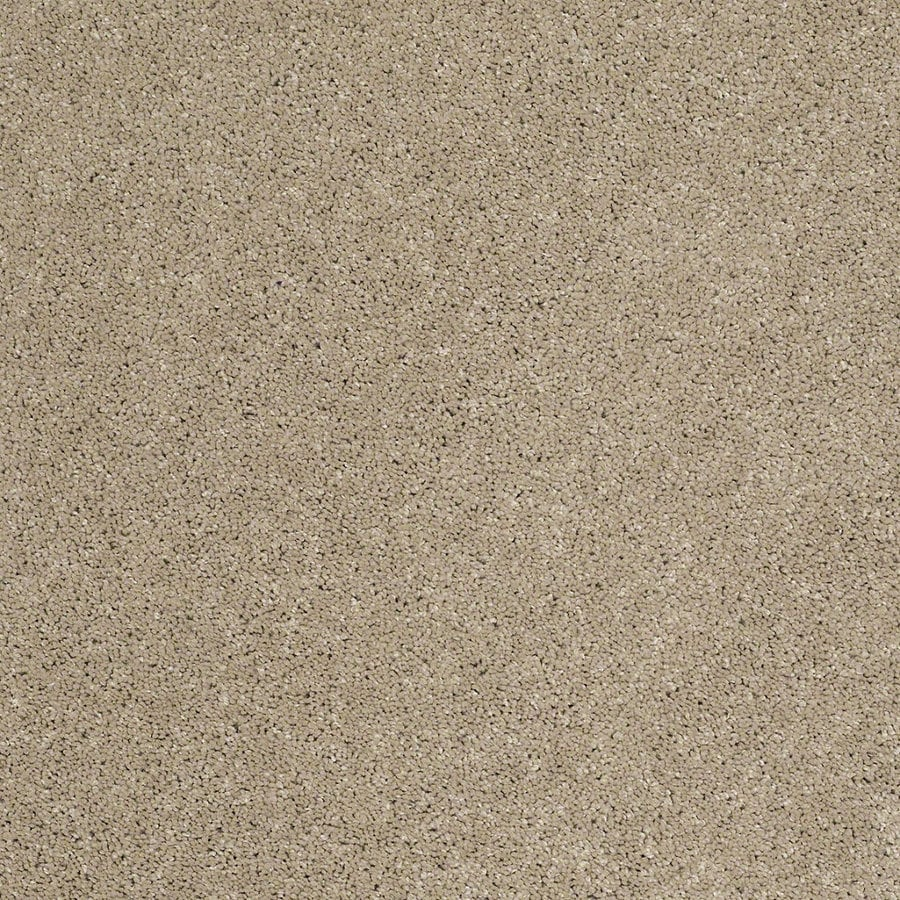 STAINMASTER Trusoft Classic II (S) Driftwood Textured Interior Carpet