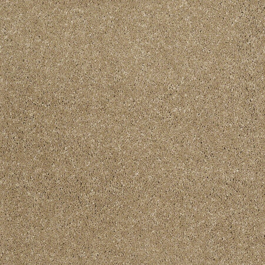 STAINMASTER Trusoft Classic II (S) Flax Textured Interior Carpet
