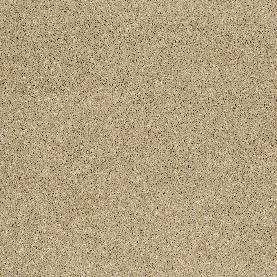 STAINMASTER Trusoft Classic II (S) Canyon Road Textured Interior Carpet