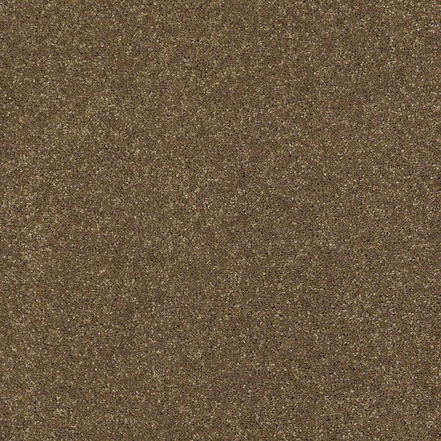 STAINMASTER Trusoft Classic II (S) Tea Wash Textured Interior Carpet