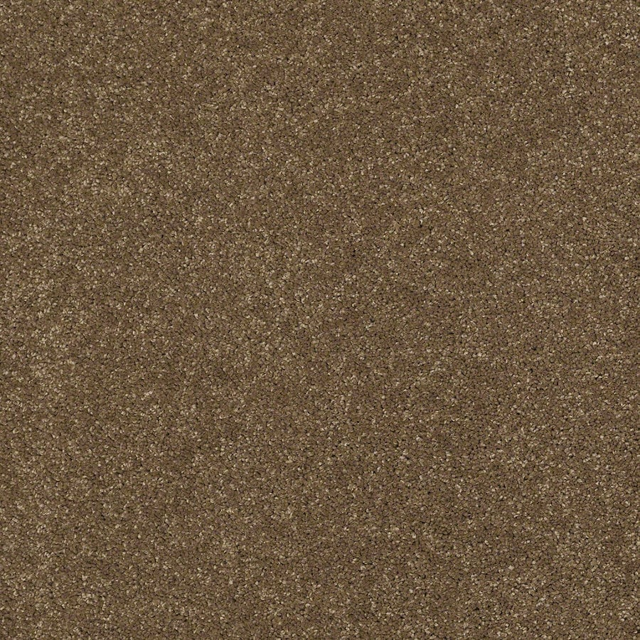 STAINMASTER TruSoft Classic II (S) Tea Wash Textured Indoor Carpet