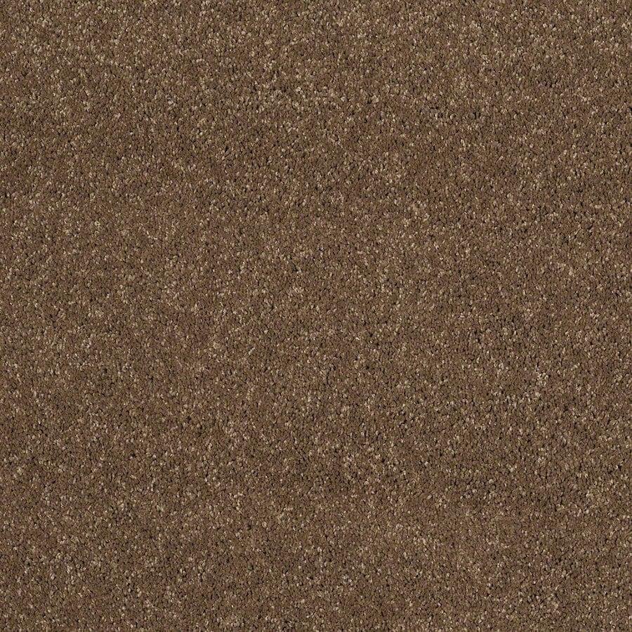STAINMASTER Trusoft Classic II (S) Chestnut Textured Interior Carpet