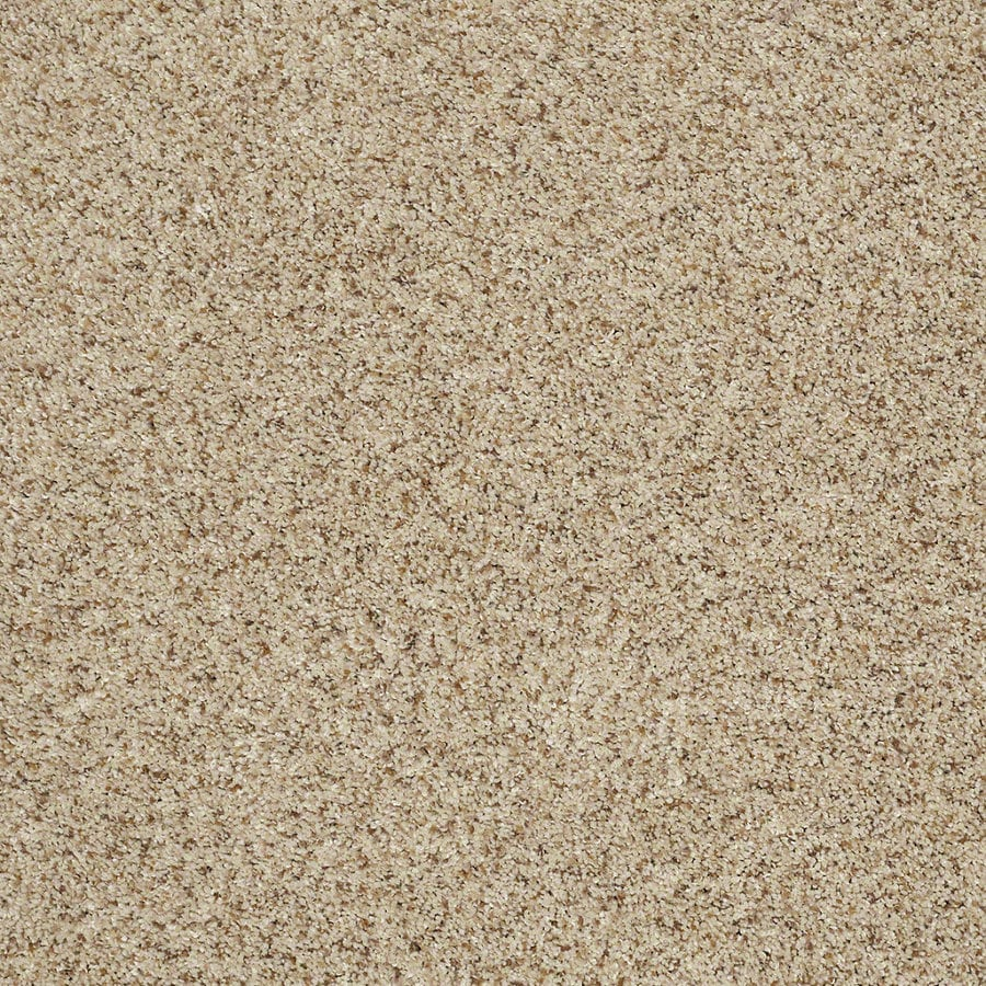 STAINMASTER Trusoft Classic II (T) Downtown Textured Interior Carpet
