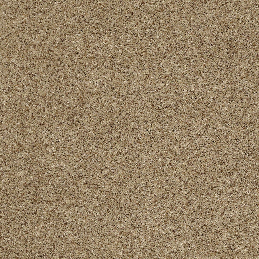 STAINMASTER TruSoft Classic II (T) Brownstone Textured Interior Carpet