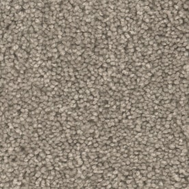 Shaw Reclaim Rr 12 Ft Textured Interior Carpet