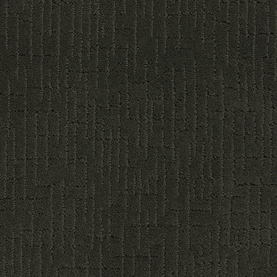 STAINMASTER TruSoft Gates-mills 12-ft W Tuxedos Berber/Loop Interior Carpet