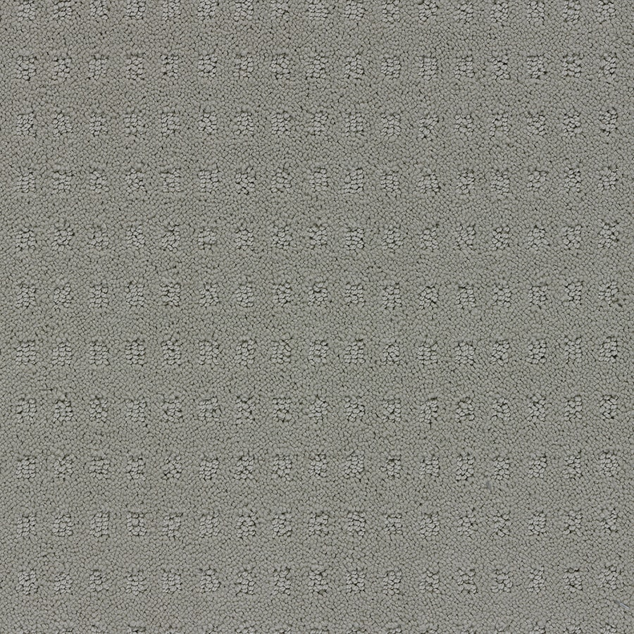 STAINMASTER TruSoft Glen Willow 12-ft W x Cut-to-Length Glaze Berber/Loop Interior Carpet