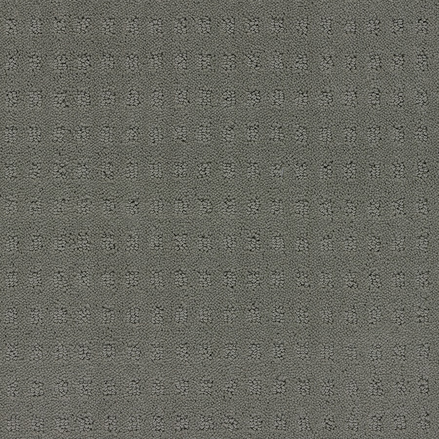 STAINMASTER TruSoft Glen Willow 12-ft W x Cut-to-Length Charcoal Berber/Loop Interior Carpet