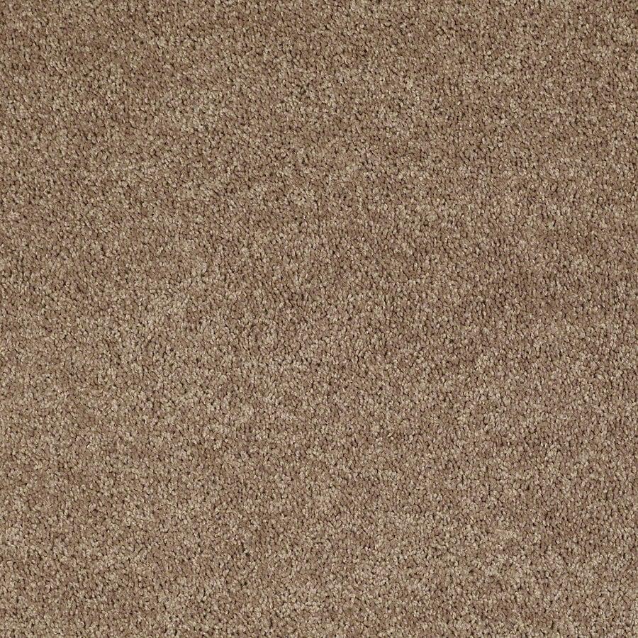 Shaw Putty Textured Interior Carpet