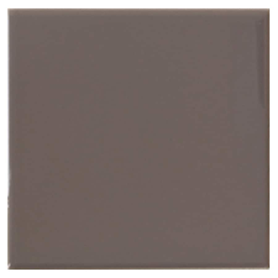 Interceramic Wall 40-Pack Sweetwood Ceramic Wall Tile (Common: 6-in x 6-in; Actual: 6.01-in x 6.01-in)