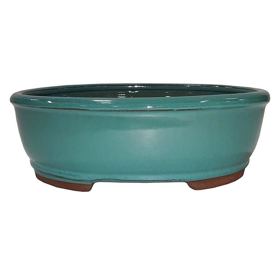 Brussel S Bonsai Green Glaze Bonsai Pots In The House Plant Accessories Department At Lowes Com
