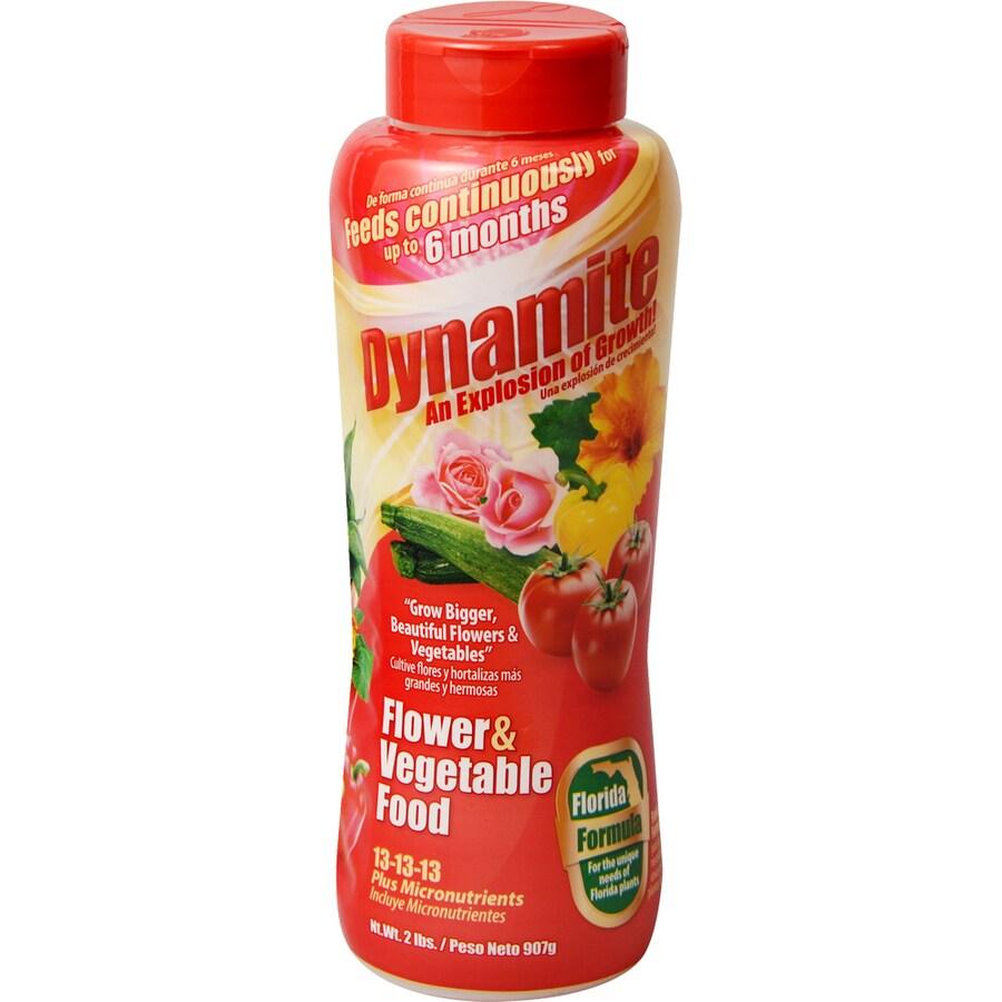 Dynamite Florida Formula 2-lb Flower Food