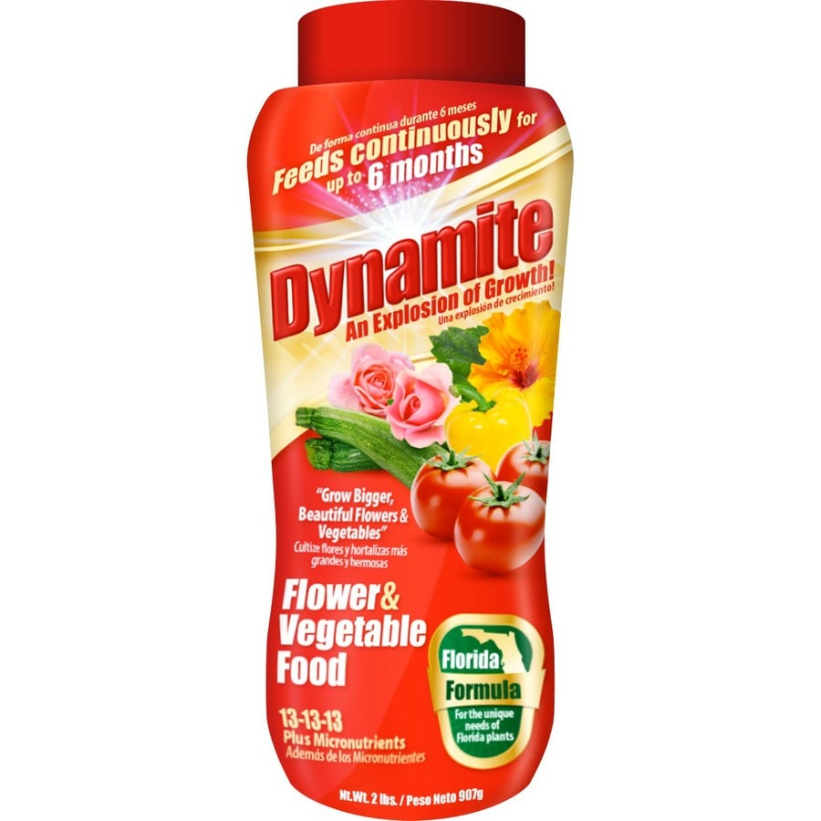 Dynamite 2-lb Synthetic Flower and Vegetable Food (13-13-13)