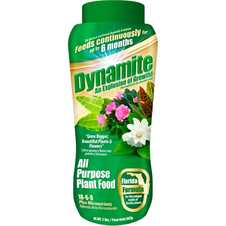 Dynamite 2-lb Synthetic All Purpose Food (18-6-8)