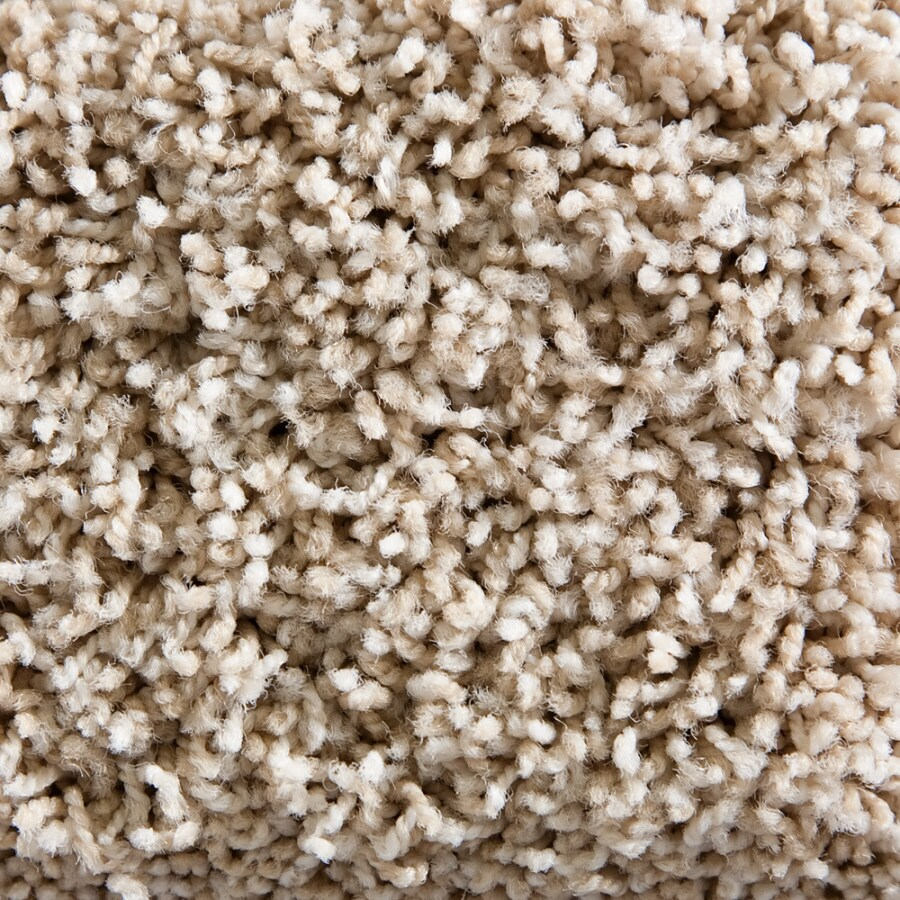 STAINMASTER Active Family Gallery Monsoon Textured Indoor Carpet