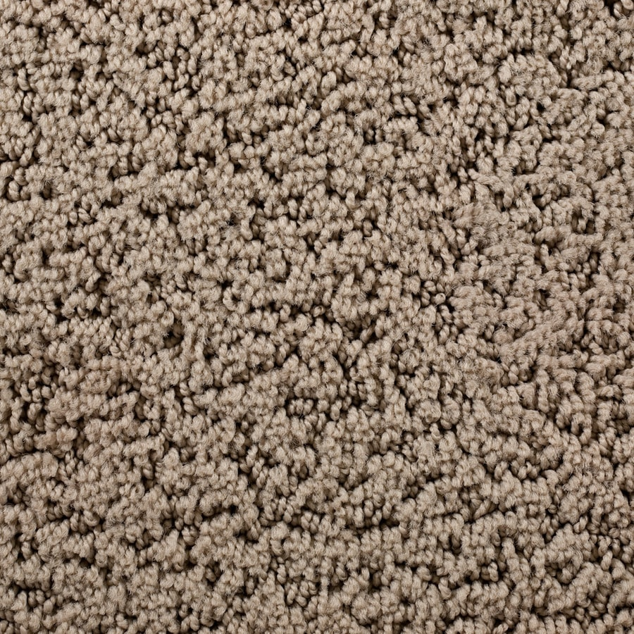 STAINMASTER Active Family Surfside Doheny Beach Pattern Interior Carpet