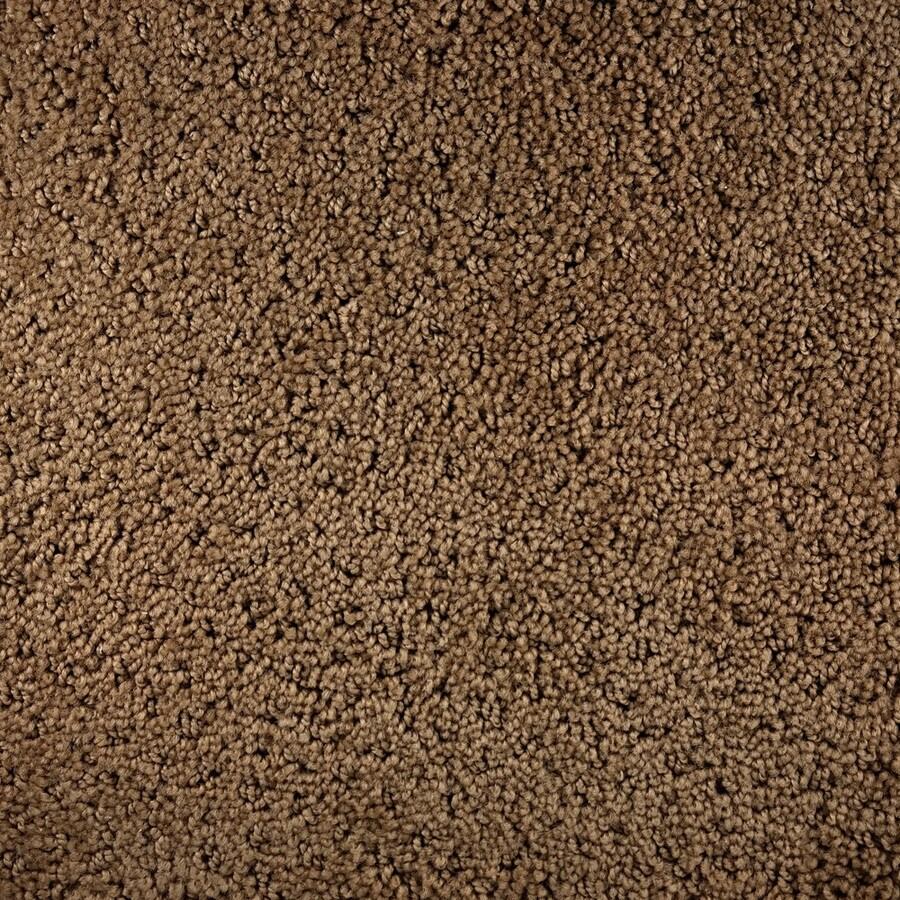Royalty Carpet Mills Active Family Millenia Spirit Pattern Indoor Carpet
