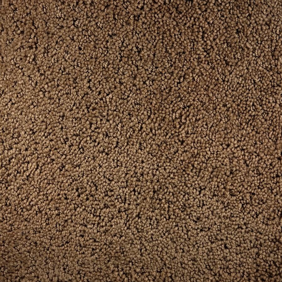 Royalty Carpet Mills Active Family Presidio Spirit Pattern Interior Carpet
